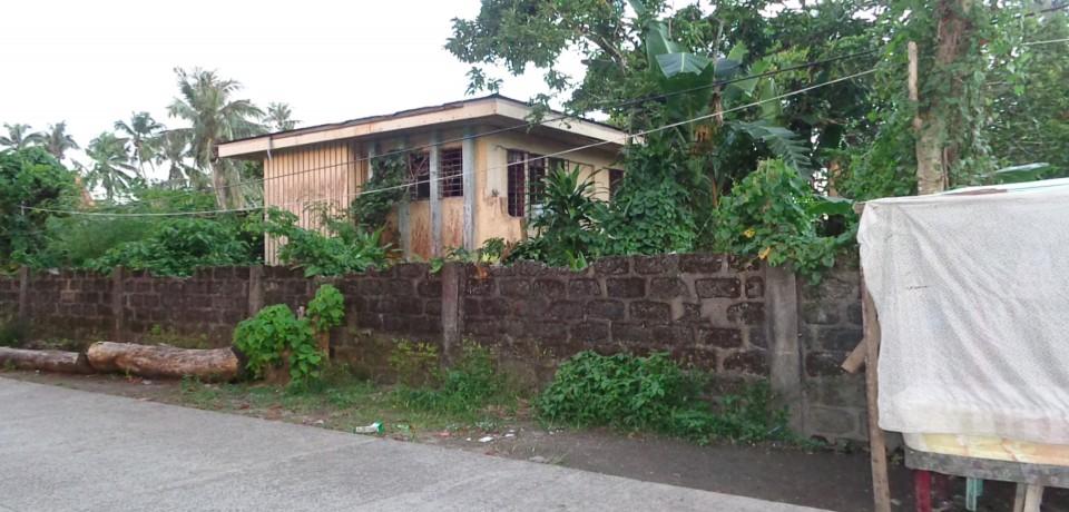 FOR SALE: House Eastern Samar