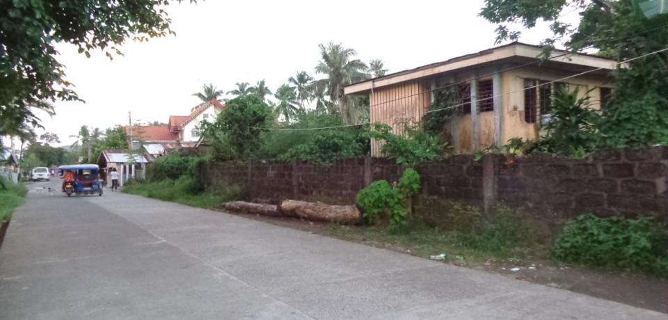 FOR SALE: House Eastern Samar 1