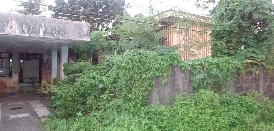FOR SALE: House Eastern Samar 4