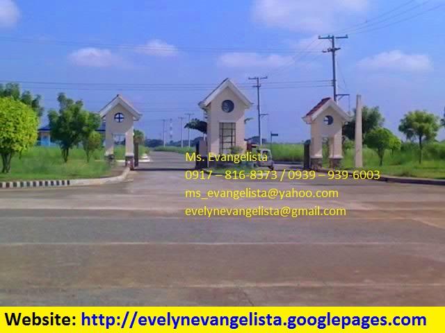 FOR SALE: Lot / Land / Farm Nueva Ecija > Cabanatuan