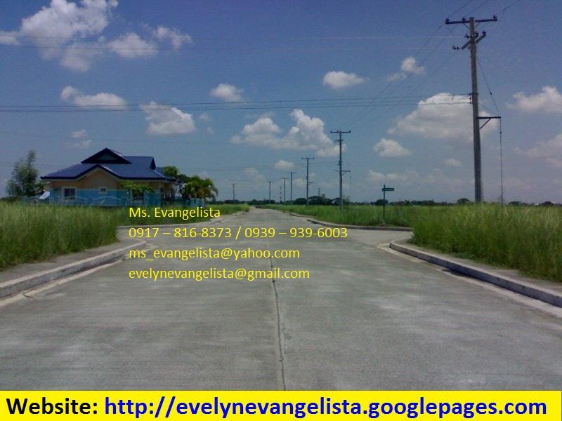 FOR SALE: Lot / Land / Farm Nueva Ecija > Cabanatuan 4