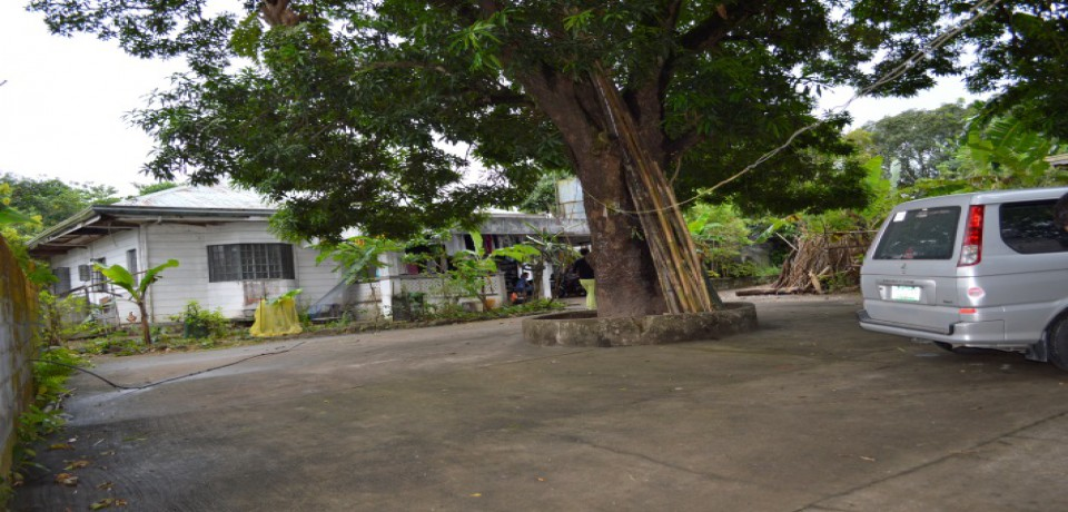 FOR SALE: House Bataan 1