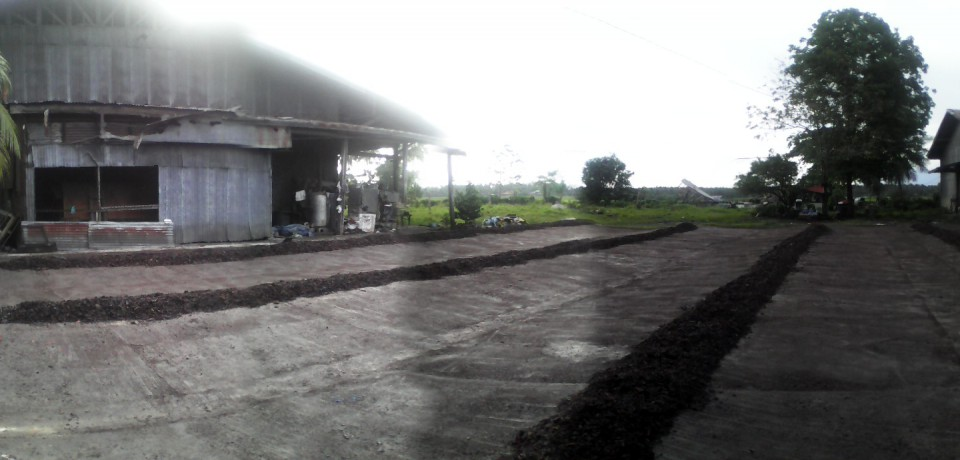 FOR SALE: Office / Commercial / Industrial Agusan del Sur 1