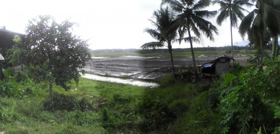 FOR SALE: Office / Commercial / Industrial Agusan del Sur 7