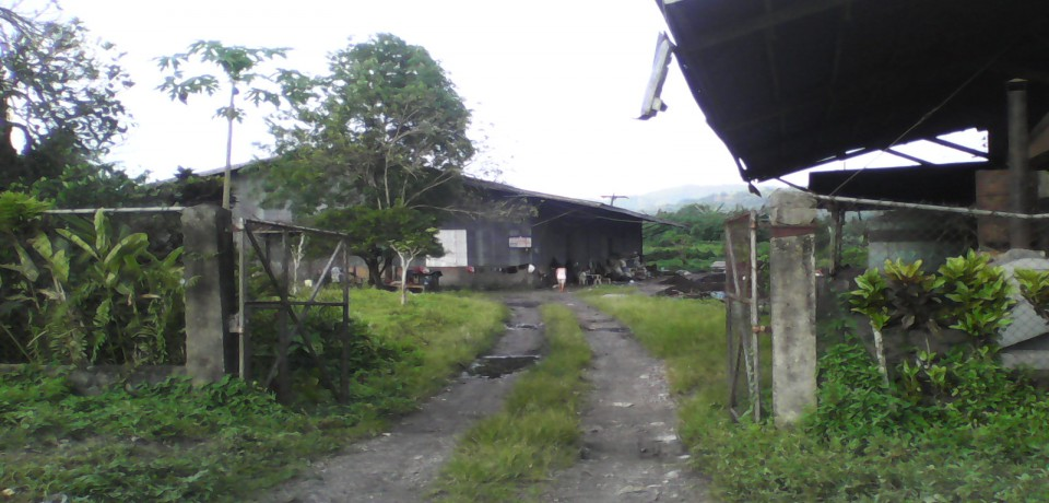 FOR SALE: Office / Commercial / Industrial Agusan del Sur 10