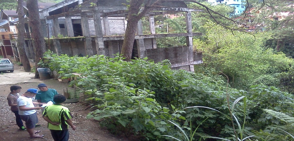 FOR SALE: Lot / Land / Farm Benguet > Baguio 2