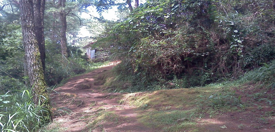 FOR SALE: Lot / Land / Farm Benguet > Baguio 6
