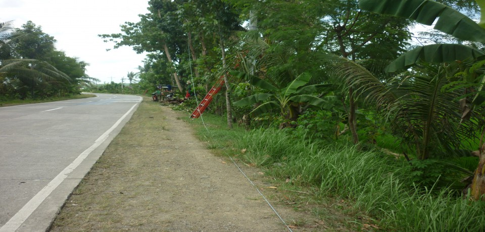 FOR SALE: Lot / Land / Farm Capiz 7