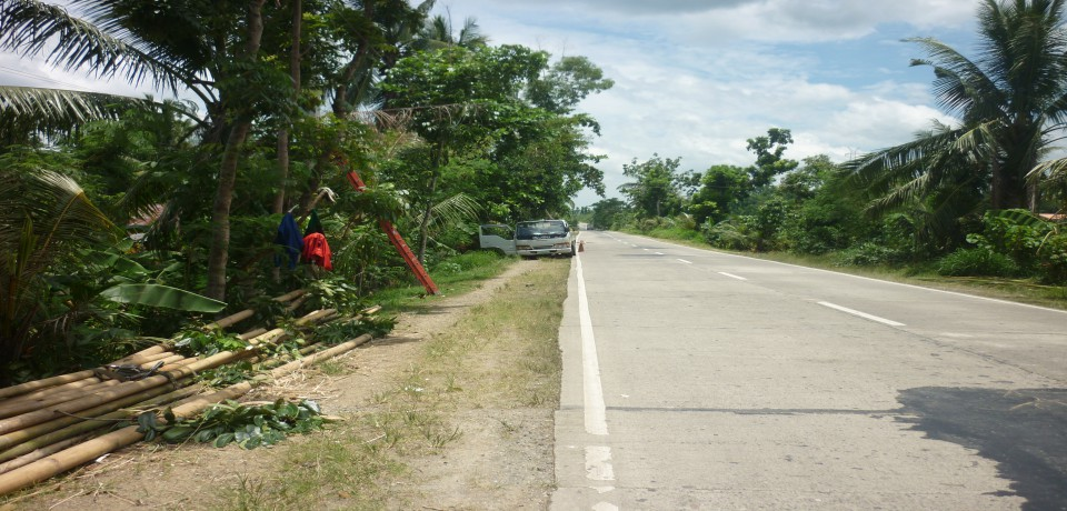 FOR SALE: Lot / Land / Farm Capiz 8