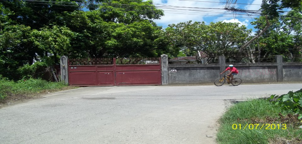 FOR SALE: House Capiz