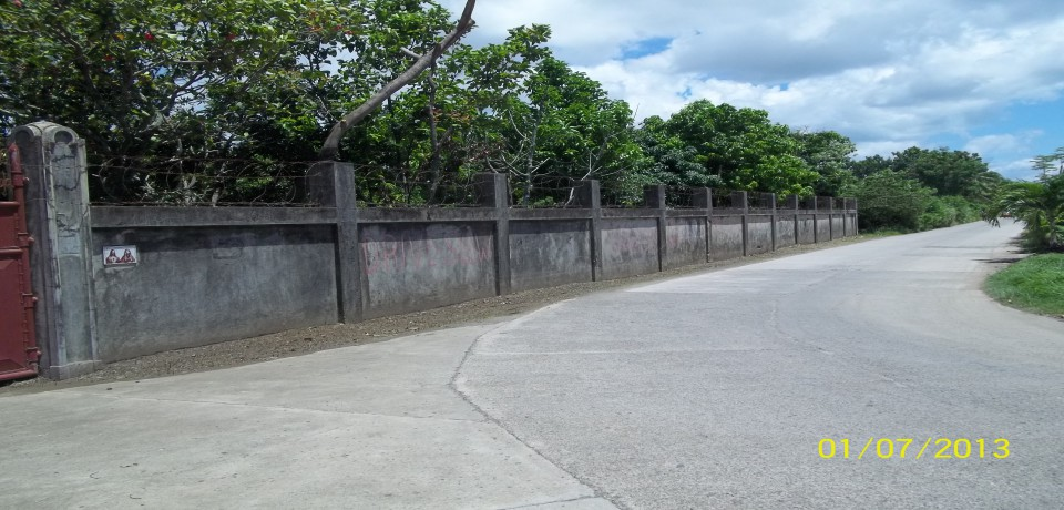 FOR SALE: House Capiz 1