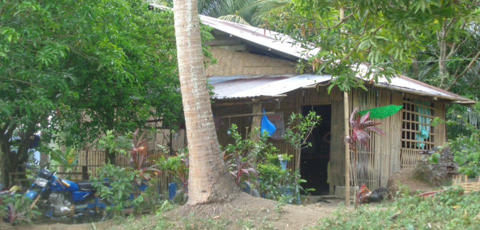 FOR SALE: Lot / Land / Farm Camarines Norte 4