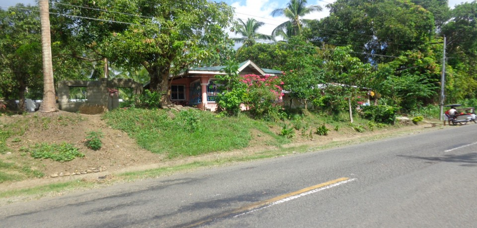 FOR SALE: Lot / Land / Farm Camarines Norte 5