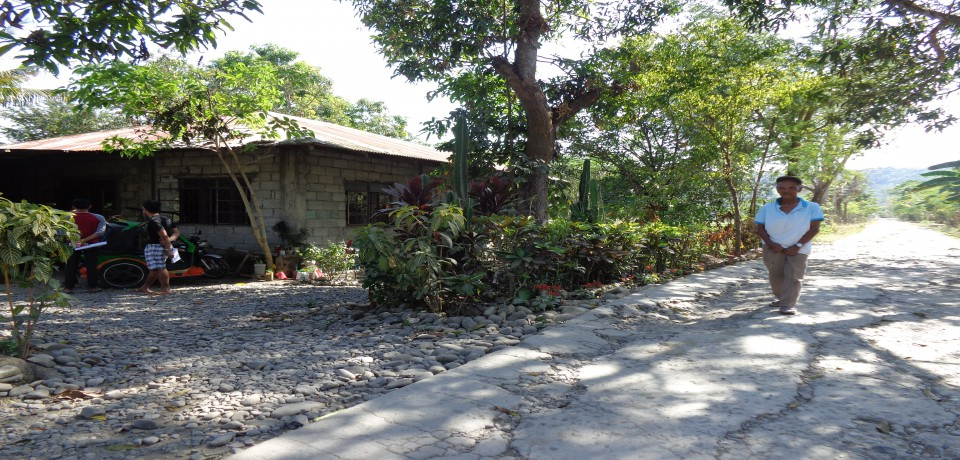 FOR SALE: House La Union