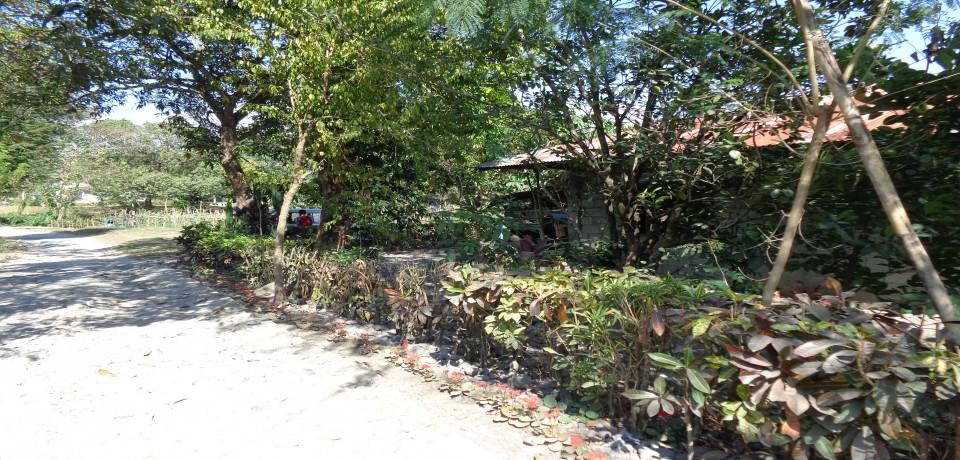 FOR SALE: House La Union 2