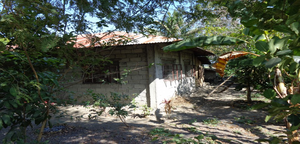FOR SALE: House La Union 3