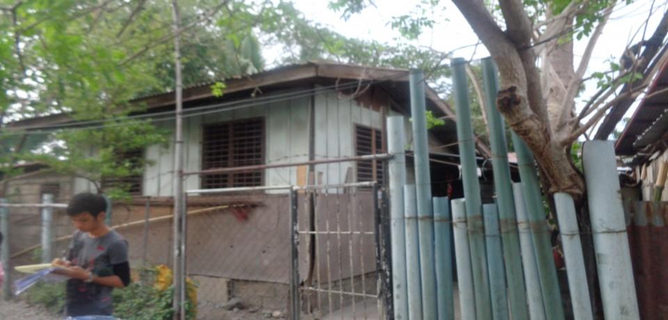 FOR SALE: Lot / Land / Farm Nueva Ecija