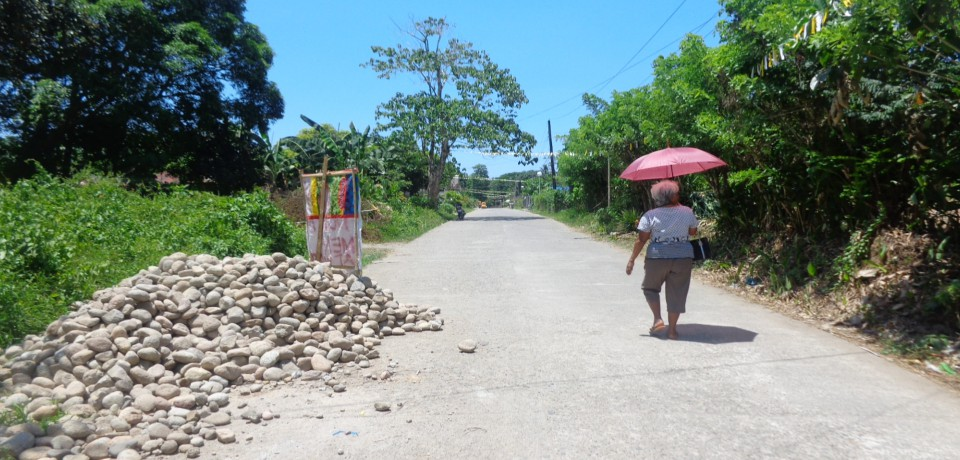 FOR SALE: Lot / Land / Farm Camarines Norte 3