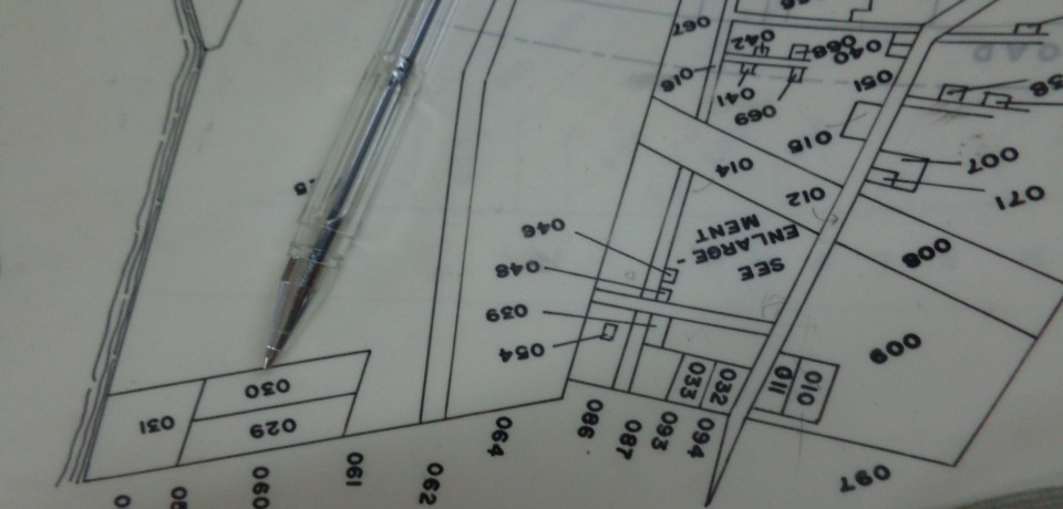 FOR SALE: Lot / Land / Farm Camarines Norte 7