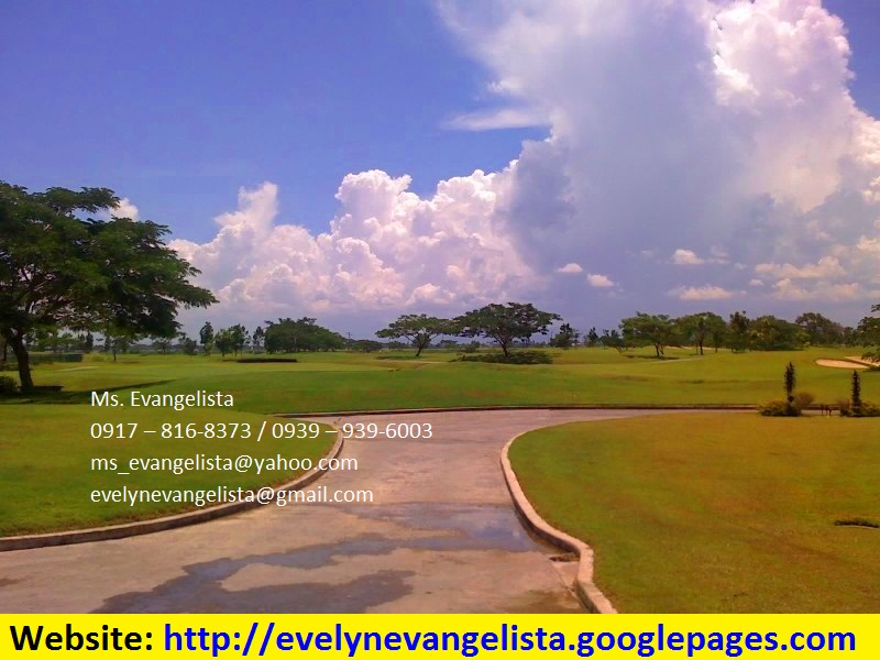 FOR SALE: Lot / Land / Farm Nueva Ecija > Cabanatuan 1