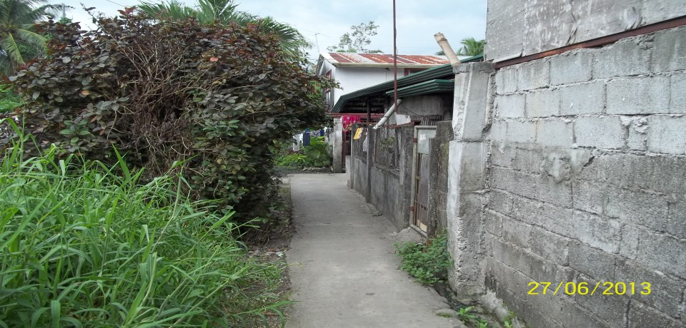 FOR SALE: Lot / Land / Farm Abra 3