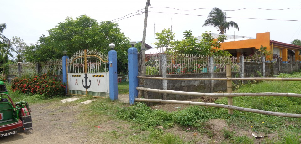 FOR SALE: House Capiz 7