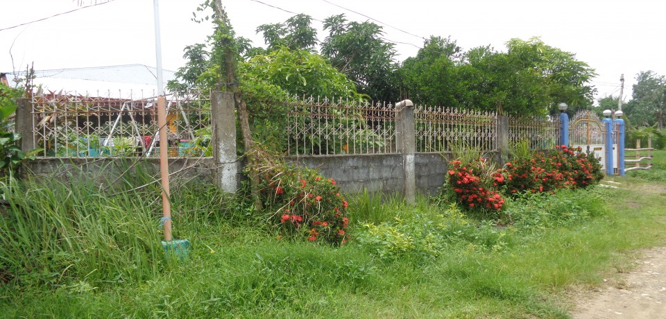 FOR SALE: House Capiz 6