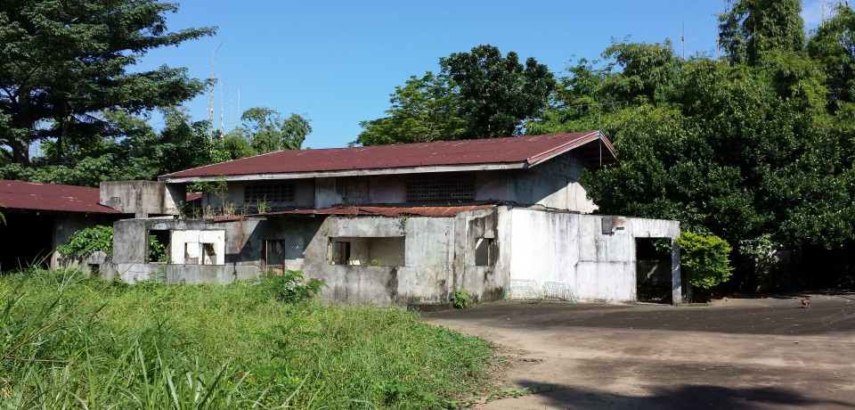 FOR SALE: Lot / Land / Farm Batangas 9