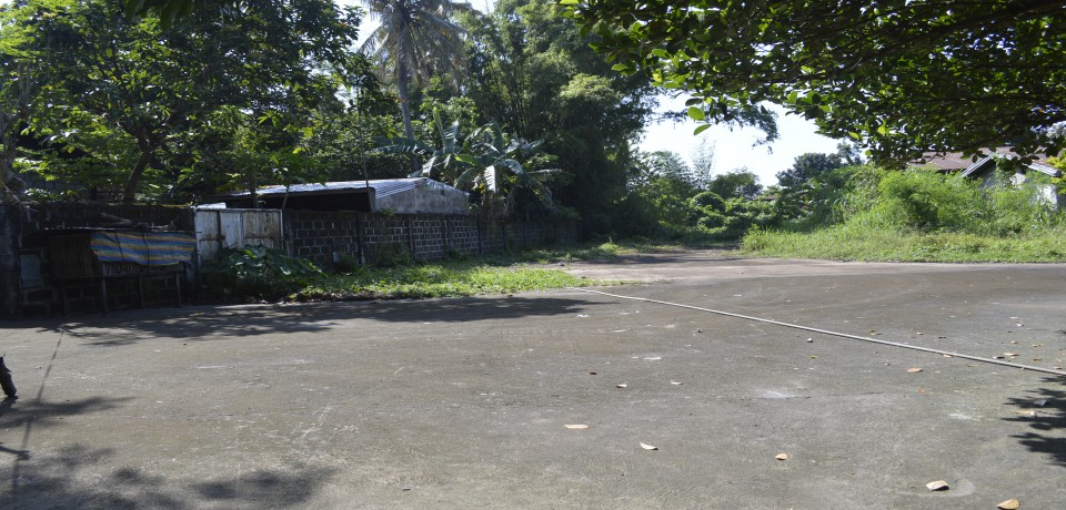 FOR SALE: Lot / Land / Farm Batangas 5