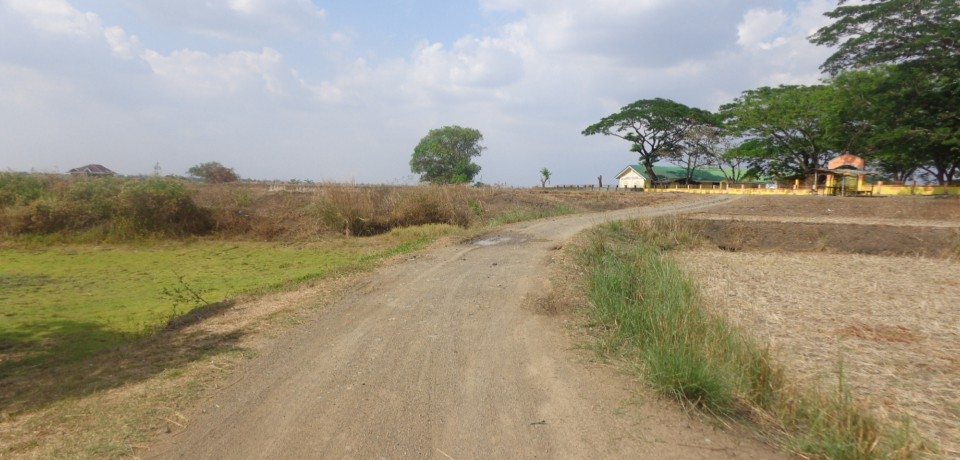 FOR SALE: Lot / Land / Farm Nueva Ecija 1