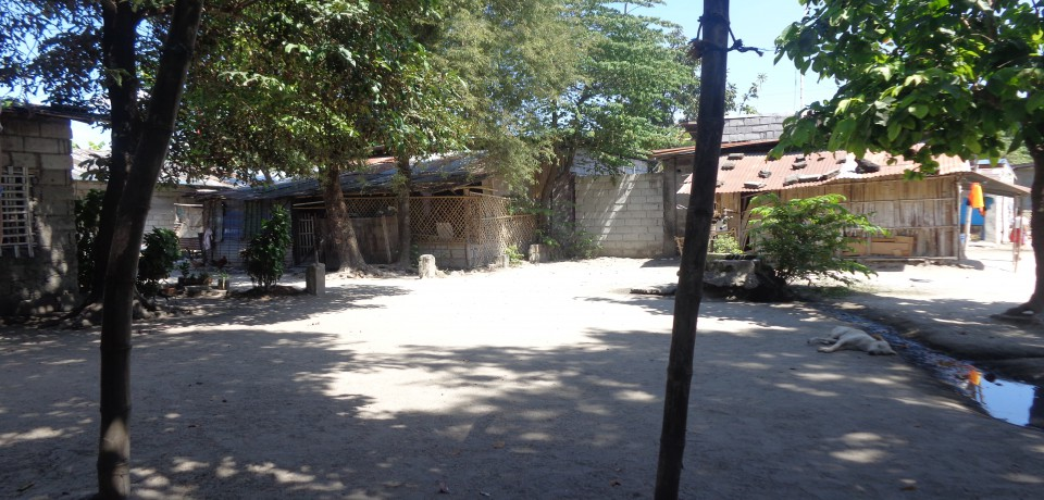 FOR SALE: Lot / Land / Farm Pampanga 6