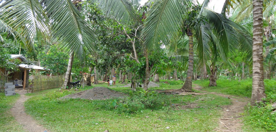 FOR SALE: Lot / Land / Farm Leyte 3