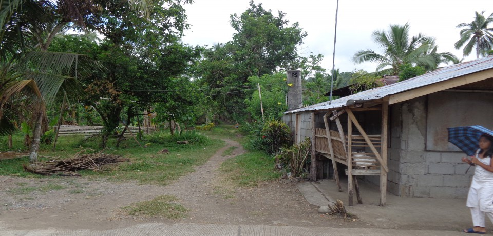 FOR SALE: Lot / Land / Farm Leyte 5