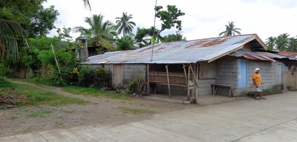 FOR SALE: Lot / Land / Farm Leyte 7