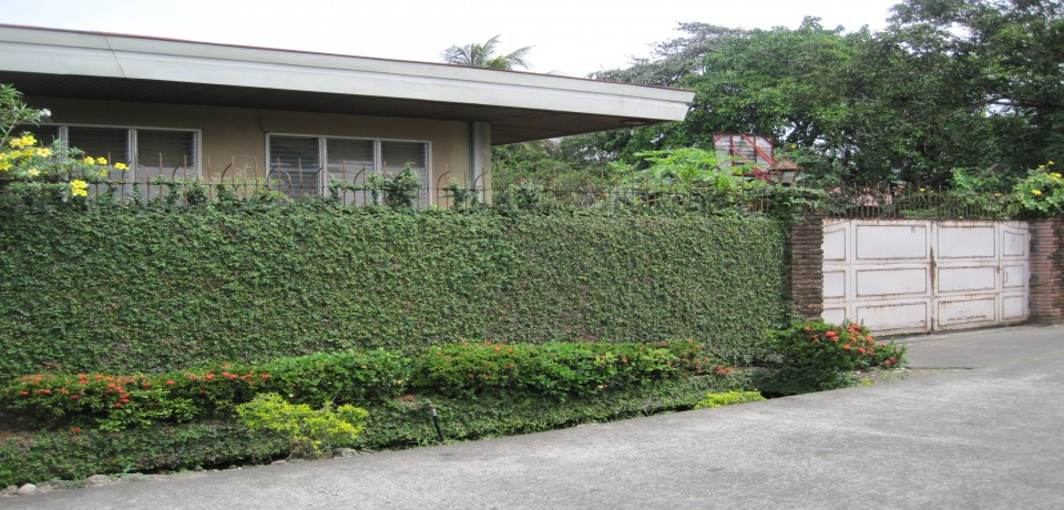 FOR SALE: House Negros Occidental