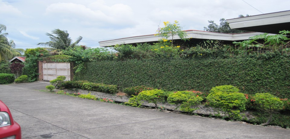 FOR SALE: House Negros Occidental 2