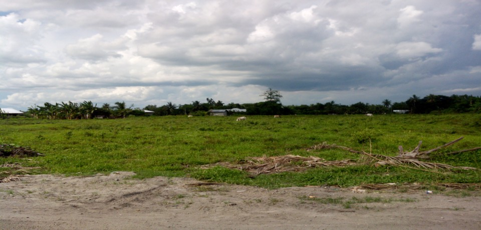FOR SALE: Lot / Land / Farm Sultan Kudarat 1