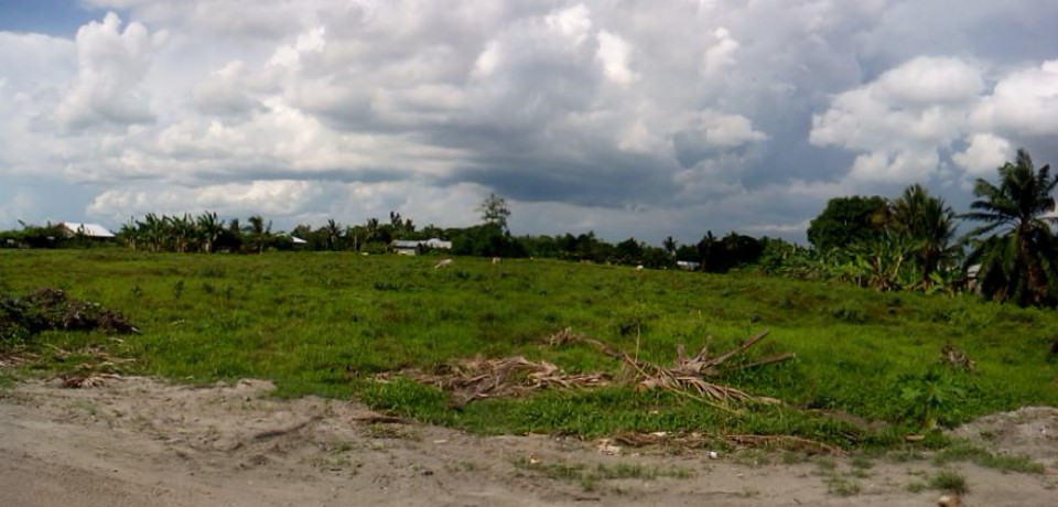 FOR SALE: Lot / Land / Farm Sultan Kudarat 3