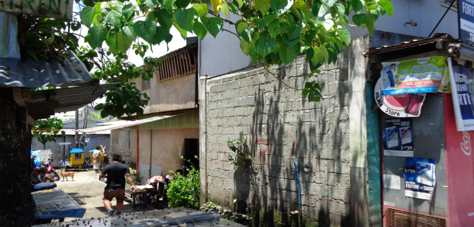 FOR SALE: Office / Commercial / Industrial Samar 4