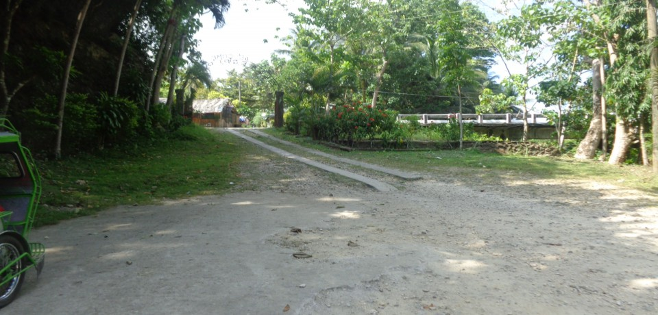 FOR SALE: Office / Commercial / Industrial Camarines Sur 8