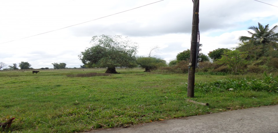 FOR SALE: Lot / Land / Farm Isabela 1