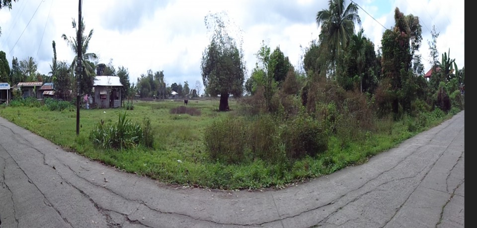 FOR SALE: Lot / Land / Farm Isabela 4