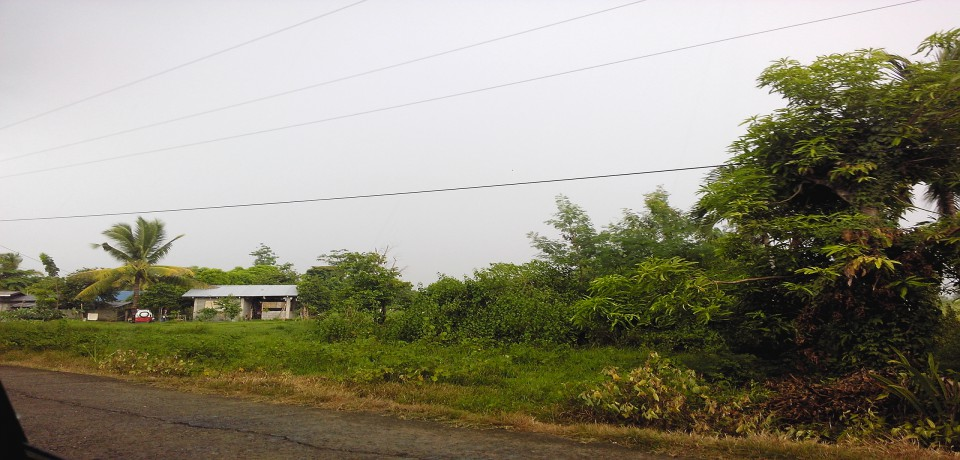 FOR SALE: Lot / Land / Farm Isabela 7