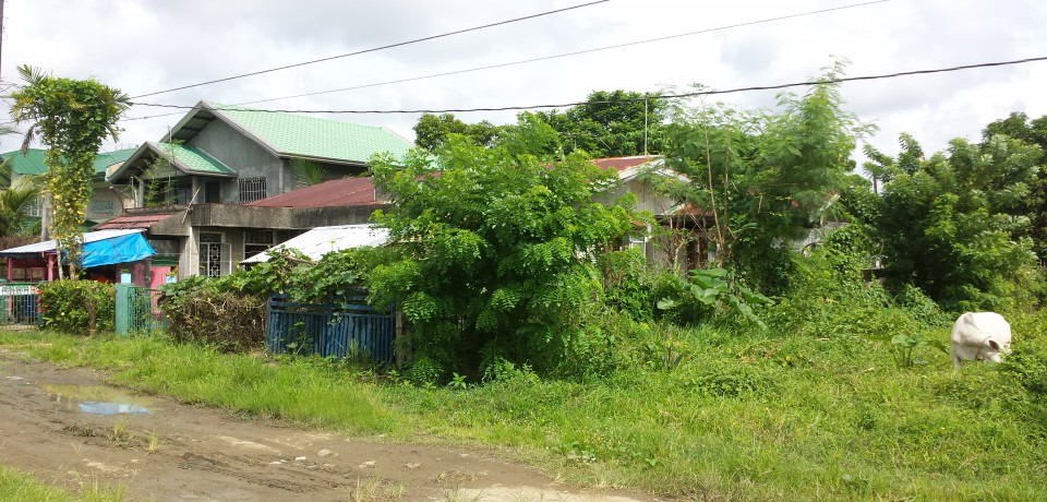 FOR SALE: Apartment / Condo / Townhouse Quezon 3