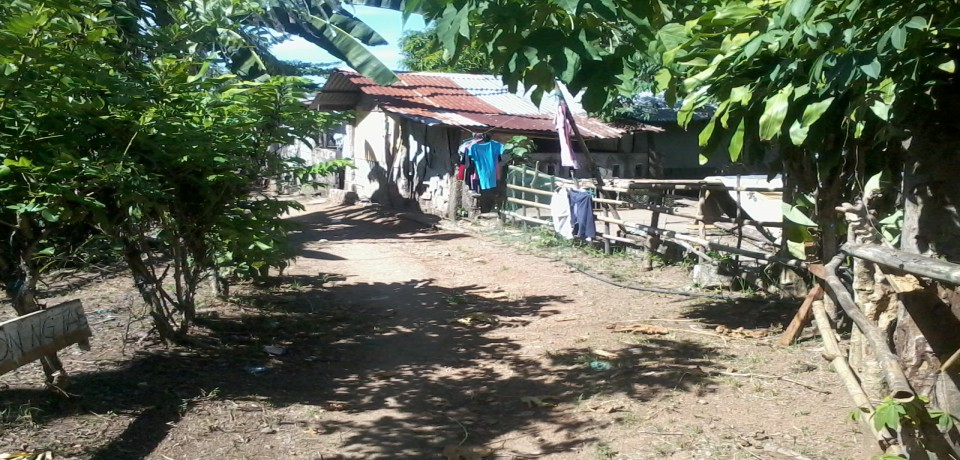 FOR SALE: Lot / Land / Farm Quezon 2