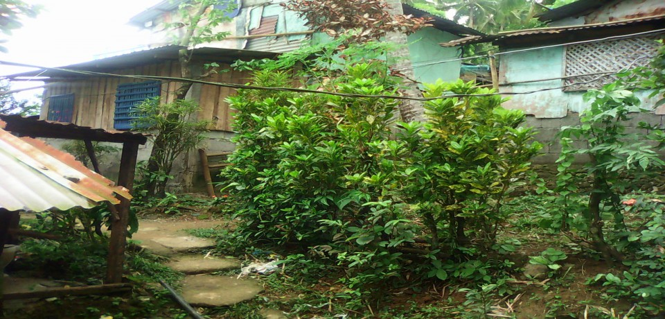 FOR SALE: Lot / Land / Farm Quezon 4