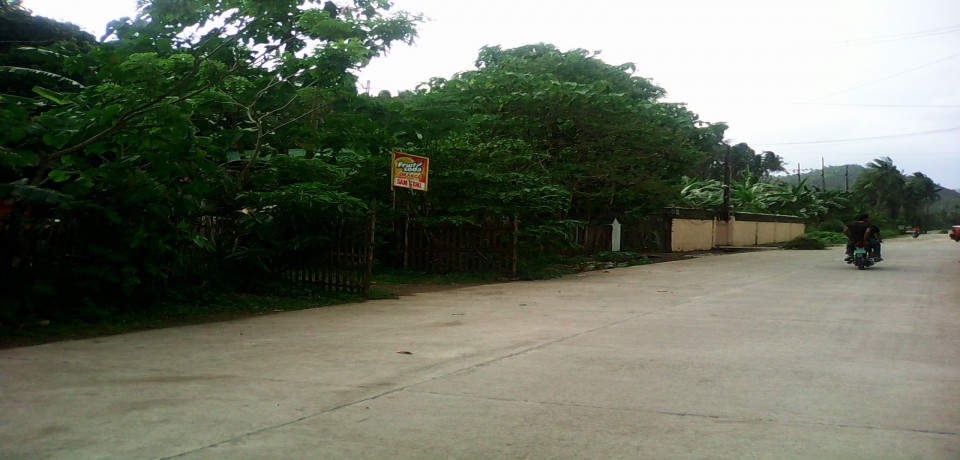 FOR SALE: Lot / Land / Farm Quezon 9