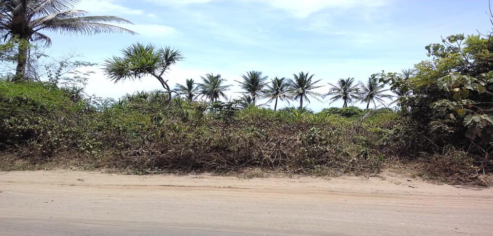 FOR SALE: Lot / Land / Farm Cagayan