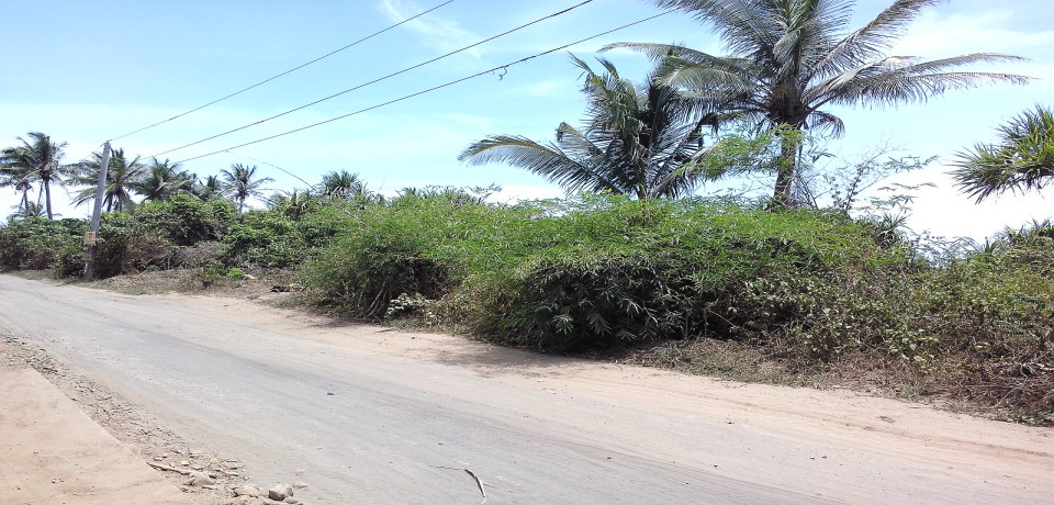 FOR SALE: Lot / Land / Farm Cagayan 1