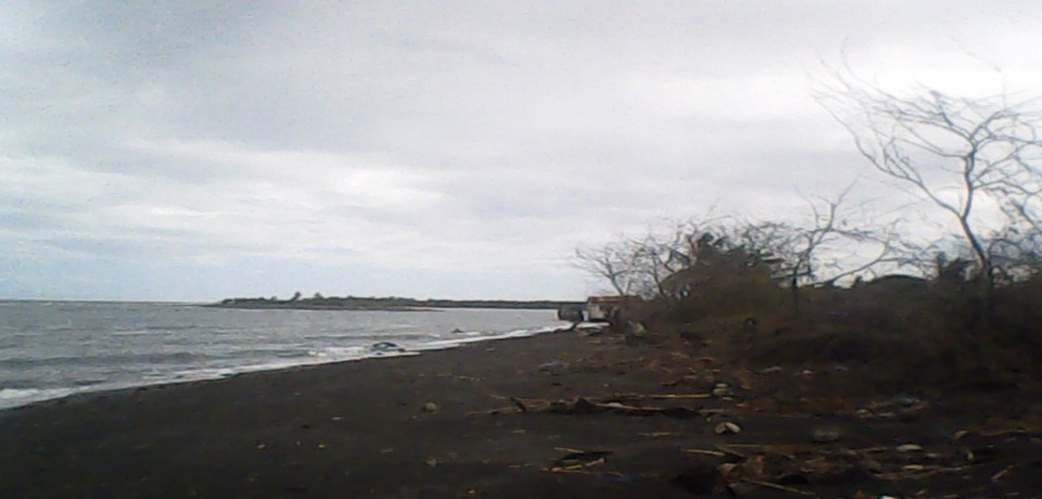 FOR SALE: Lot / Land / Farm Mindoro Oriental 4